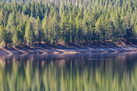 Lake Siskiyou with reflections