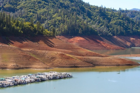 A few houseboats on Shasta Lake