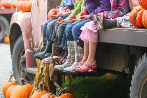 Kids visiting the farm
