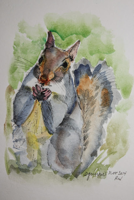 Watercolor sketch of squirrel