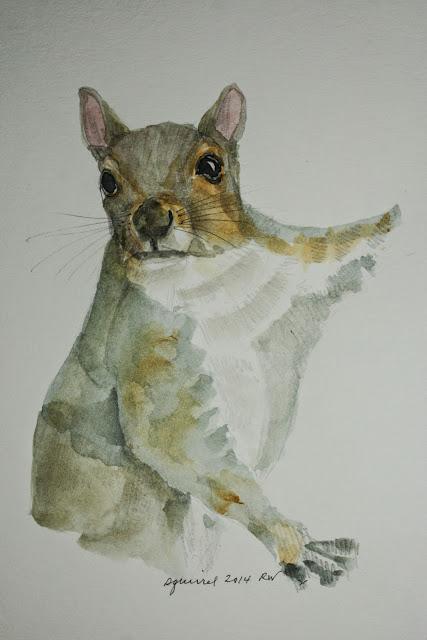 Watercolor sketch of squirrel