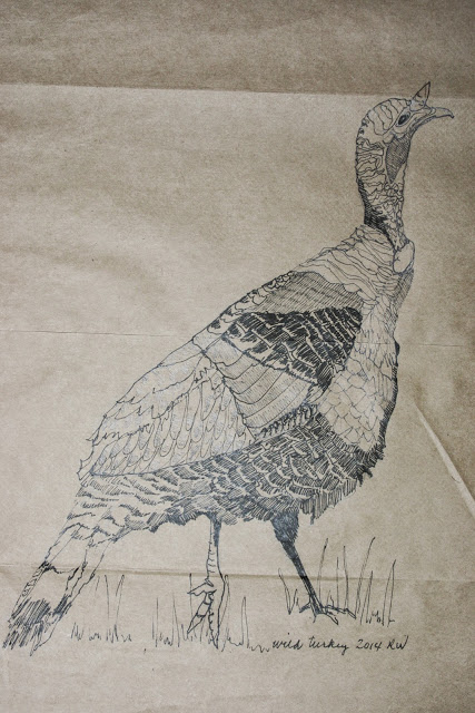 Ink sketch of wild turkey