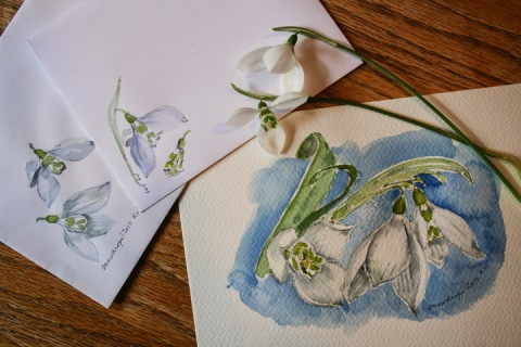 Watercolor sketches of snowdrops