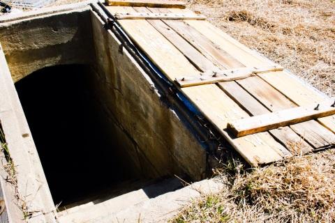 Steps to cellar