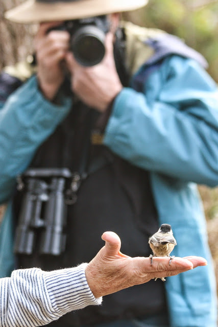 A bird in the hand . . .