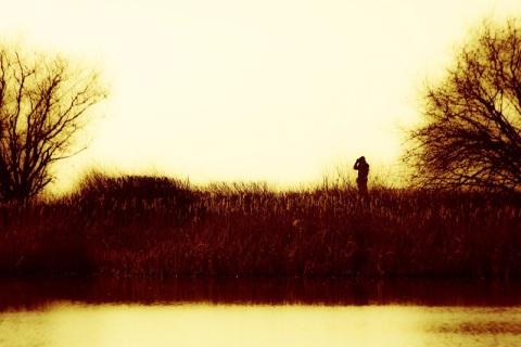 Birder on a dike trail