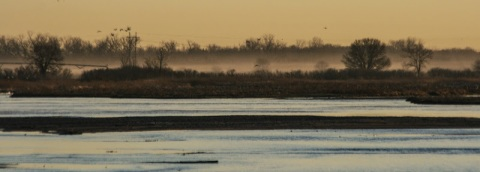 Before sunrise on the Platte River, from a blind at the Rowe Sanctuary