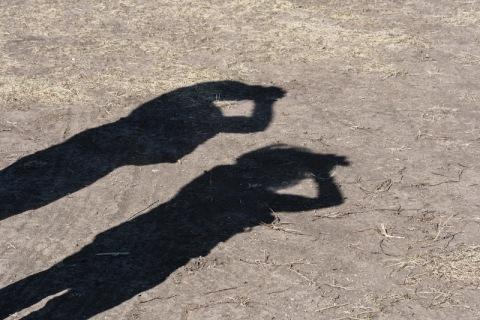 Birdwatcher shadows