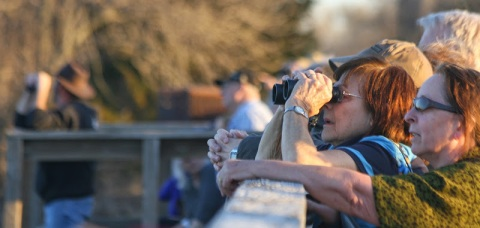 Birdwatchers along the Fort Kearney Historical  Recreation Site bridge