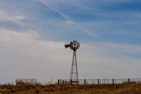 The ubiquitous windmill