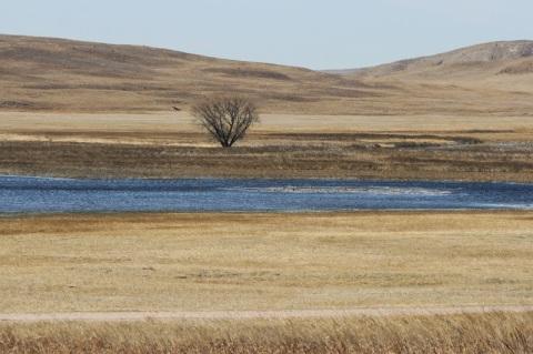 Sandhill region of Nebraska