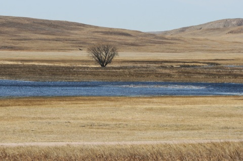 Sandhill region of Nebraska