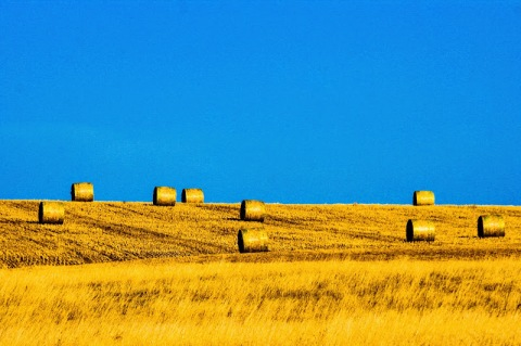Haybales (edited photo)