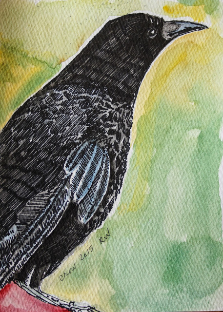 Ink and watercolor sketch of crow