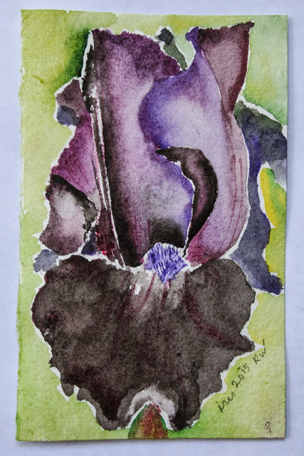 Watercolor sketch of iris using paper from France (Moulin a Papier de Provence)