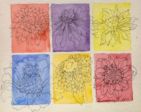 Pen and ink sketches of flowers on color blocks