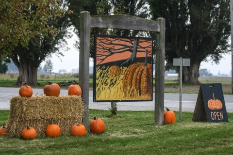 Welcome sign, Gordon Skagit Farms