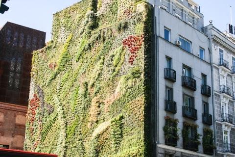 79-foot vertical garden, La Caixa Forum, Madrid