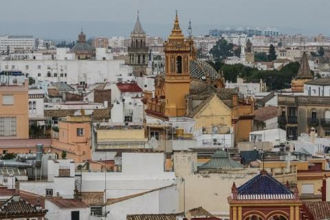 Bird's eye view of Seville (It is no wonder we heard church bells.)