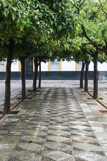 Patio de Banderas, Seville