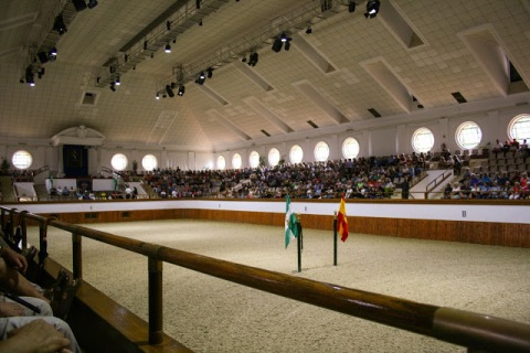 Arena, Andalusian Royal School of Equestrian Art