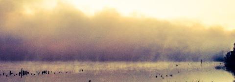 Foggy morning, Columbia River