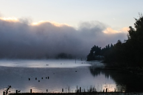 This is a more natural view of the Columbia River, the morning after Thanksgiving, as the early morning fog was dissipating.