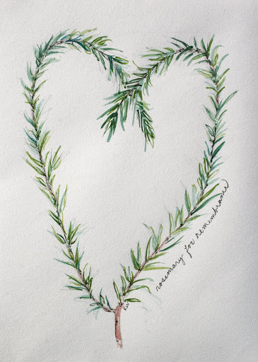 Watercolor sketch, rosemary wreath