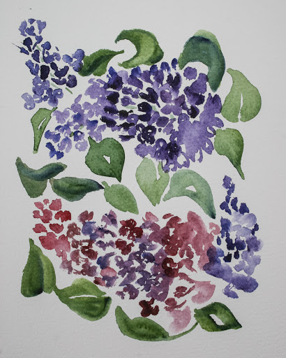 Watercolor sketch of lilacs