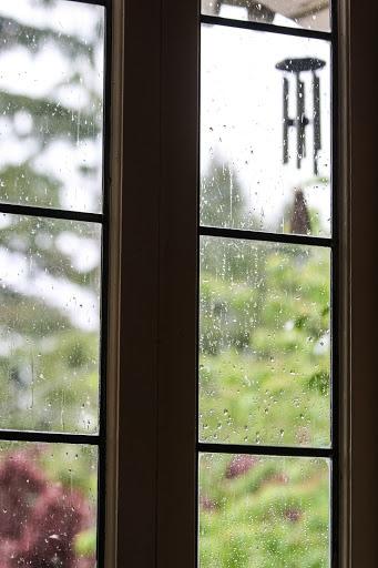 Raindrops on window panes