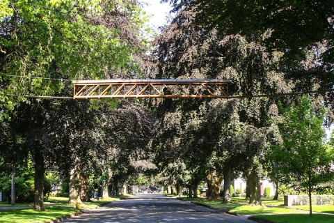 how to build a squirrel bridge