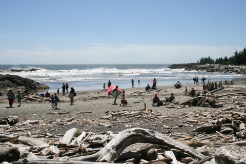 Wild beach at Cape Disappointment