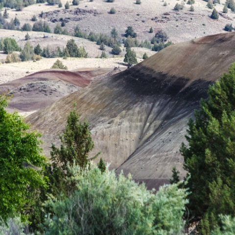 Tantalizing glimpse of painted hills