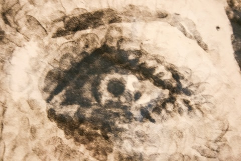Detail showing fingerprints