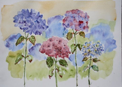 Watercolor painting of hydrangeas
