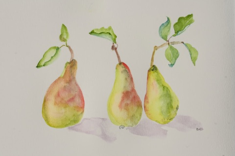 Watercolor, three pears