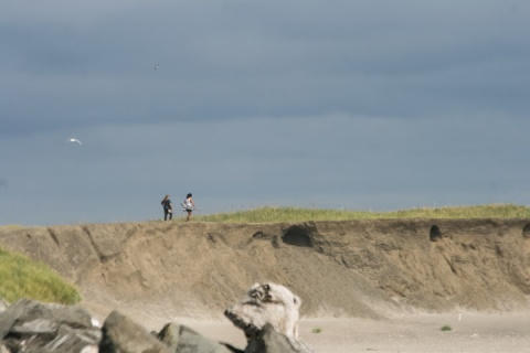 Bluff overlooking the beach at Westport