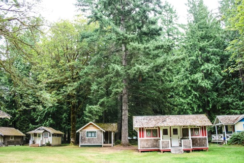 The Nature Bridge campus.  All 13 of us stayed in a larger, multi-room cabin rather than one of these cute cottages.