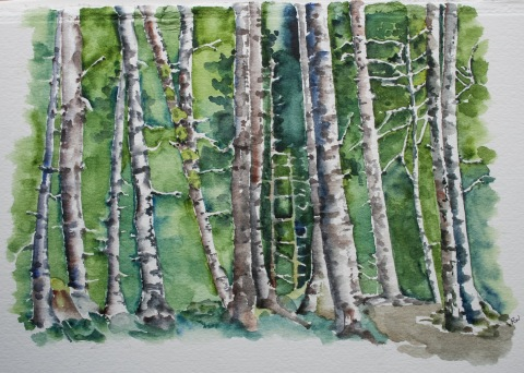 Watercolor painting of forest