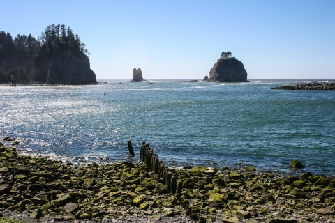 Another view of sea stacks from First Beach, La Push