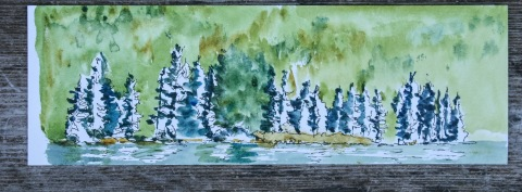 Watercolor and ink sketch of shoreline, Lake Crescent