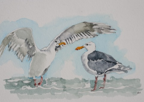 Watercolor sketch of seagulls