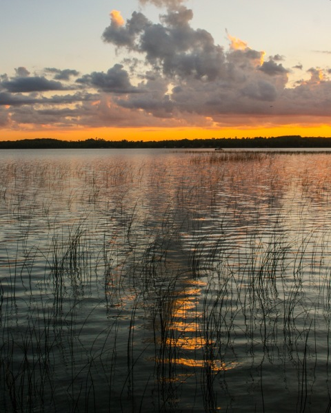 Sunset reflections with reeds