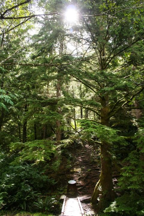 Start of hillside climb trail