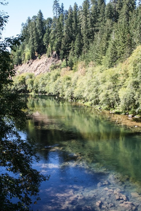 Umpqua River along Oregon Hwy 138