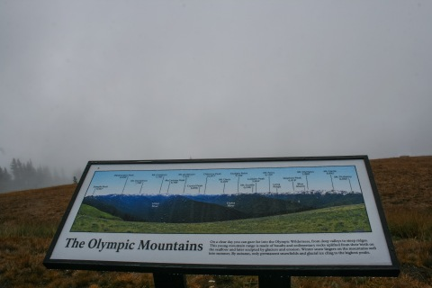 Our view of the Olympic peaks was a bust!