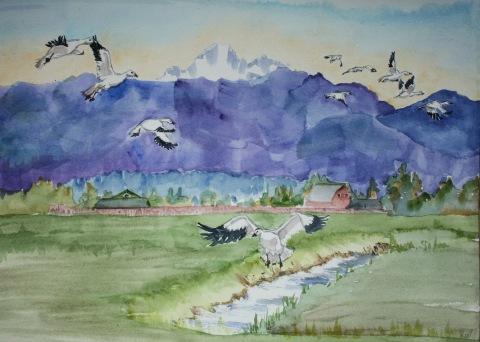 Watercolor painting of Skagit Valley snow geese