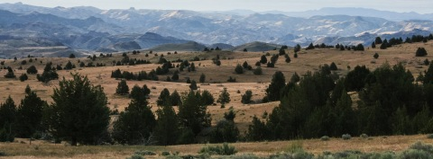 Landscape near Antelope, Oregon